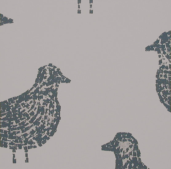 PIGEONS - Lucy White