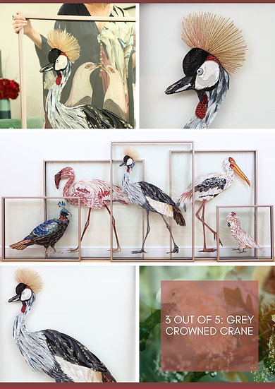 GREY CROWNED CRANE - Lily Adele