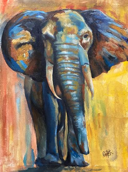 THE CHARGING ELEPHANT - Zahra Qaiser