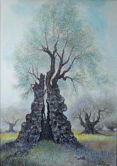 ANCIENT OLIVE TREE - Igor Tarahovski