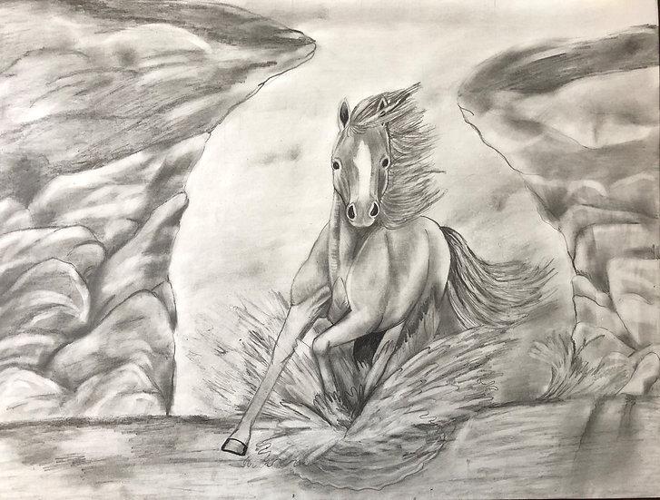 HORSE - Sammie Tzambazis