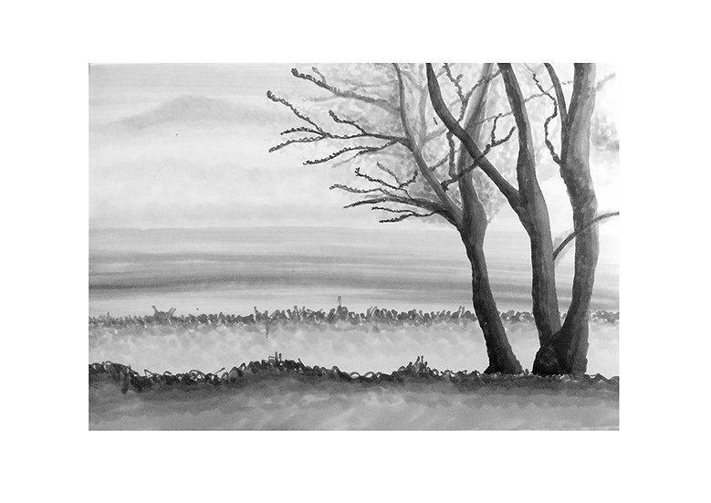 VIEW AT THE SEA- Tina Benally