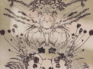 Symétrie Florale // #healingthroughnature