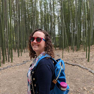 Bamboo Forest Visit With Kyoto Bike Tour