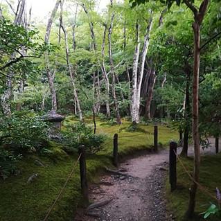 Quiet Place in Arashiyama, Kyoto