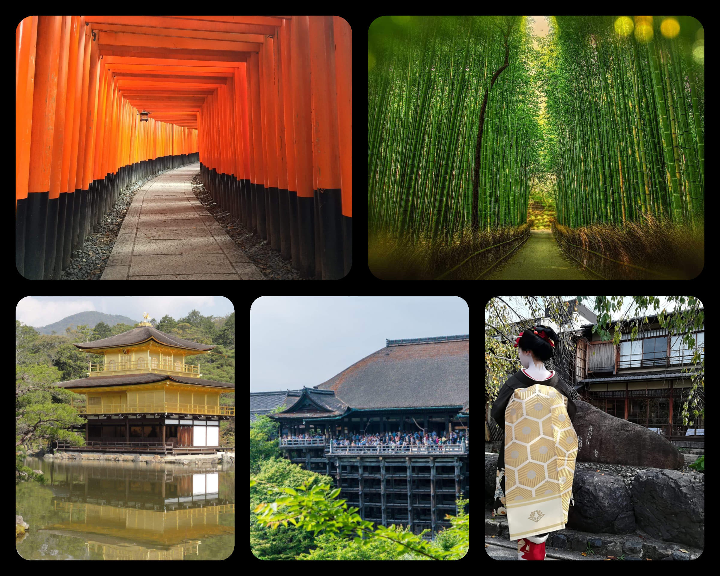 The Best of Kyoto Bike Tour