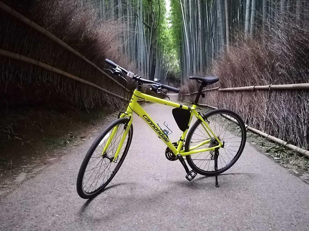 Bamboo Forest in Arashiyama with Kyoto Bike Tour