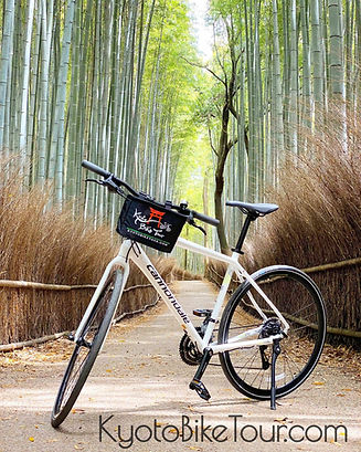 kyoto bamboo forest with Kyoto Bike Tour