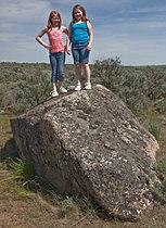 Granitic Erratic Along Marlin Hollow