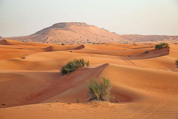 landscape-Riyadh-Saudi-Arabia.jpg