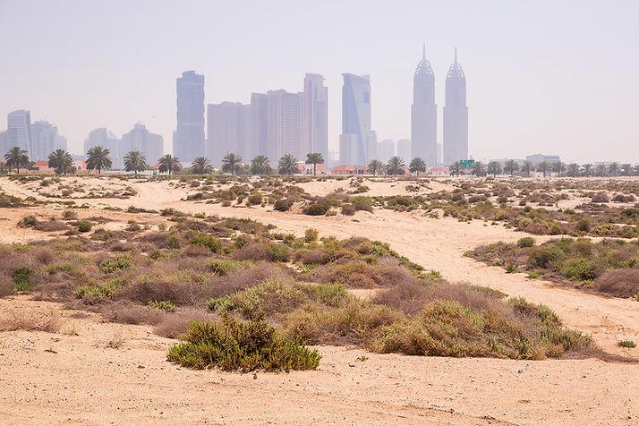 Dubai-desert-city-persian-gulf-sand.jpg