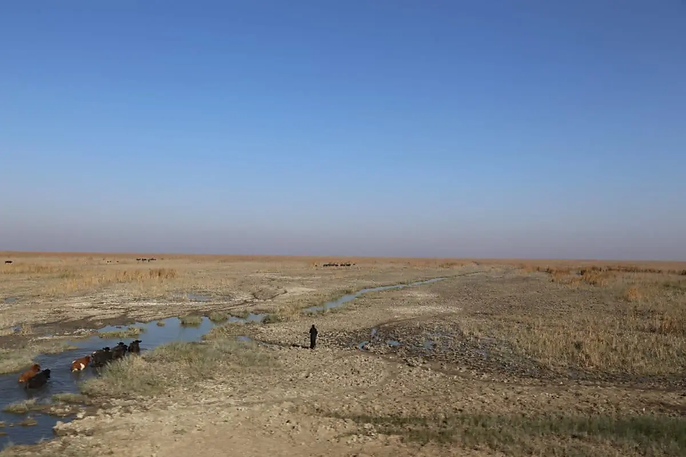 Iraq Climate Change.png