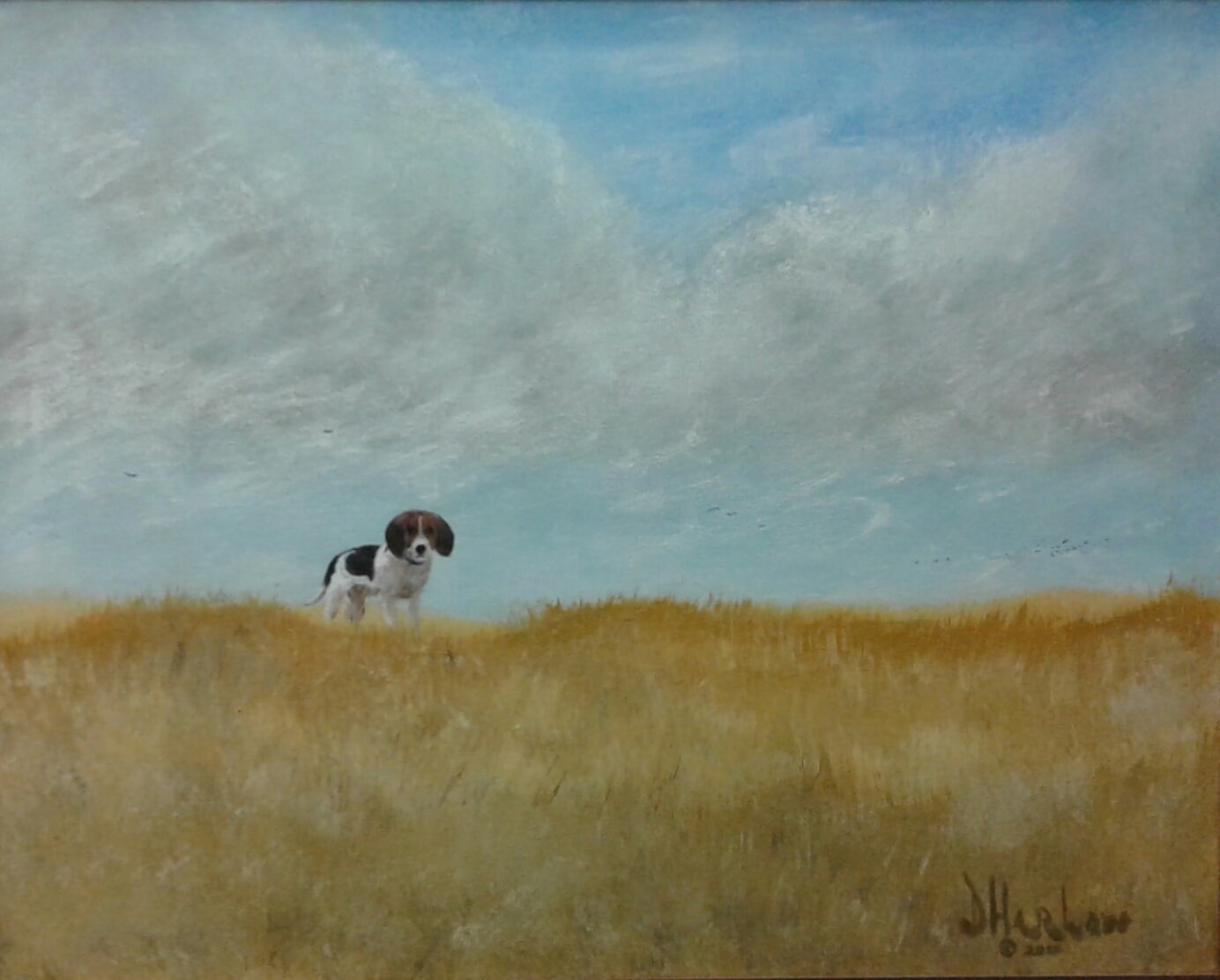 """Dog On A Hill"""