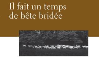 IL FAIT UN TEMPS DE BÊTE BRIDÉE, de Mathieu Simoneau