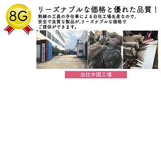 9g-5.jpg