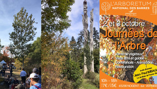 Nogent-sur-Vernisson - Arboretum des Barres - Les Journées de l'Arbre, c'est ce week-end