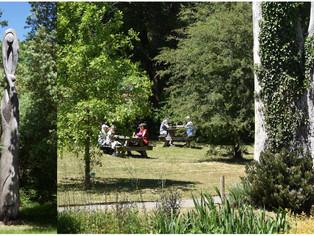 À l'arboretum des barres, profitez des activités proposées ce dimanche et lundi 12 et 13 juillet