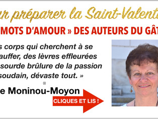 "Nicole Mouninou-Moyon : ""il faut choisir ses mots soigneusement..."""