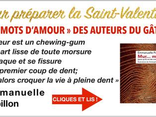 """Emmanuelle Papillon : """"Le sujet me happe, la plume se délie..."""""""