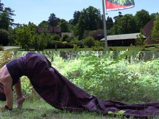 Nogent-sur-Vernisson - Ce week-end, rendez-vous très nature à l'arboretum des barres (spectacle)