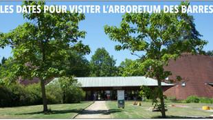 Nogent-sur-Vernisson - L'Arboretum des barres, les ouvertures en juillet et août