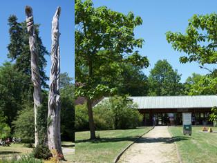 Nogent-sur-Vernisson - Ce week-end (16 et 17 octobre), l'arboretum des Barres est ouvert !