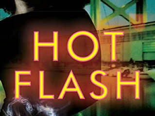 Hot Flash By Carrie H. Johnson