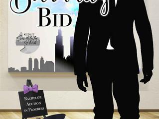 THE BIRTHDAY BID -The Distinguished Gentlemen Series Suzette Harrison