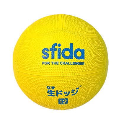 Super Soft DodgeBall (Size 2)