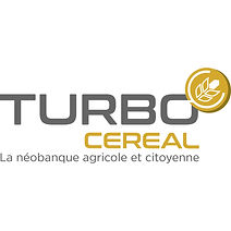 LOGO Turbo quadri - Copie.jpg