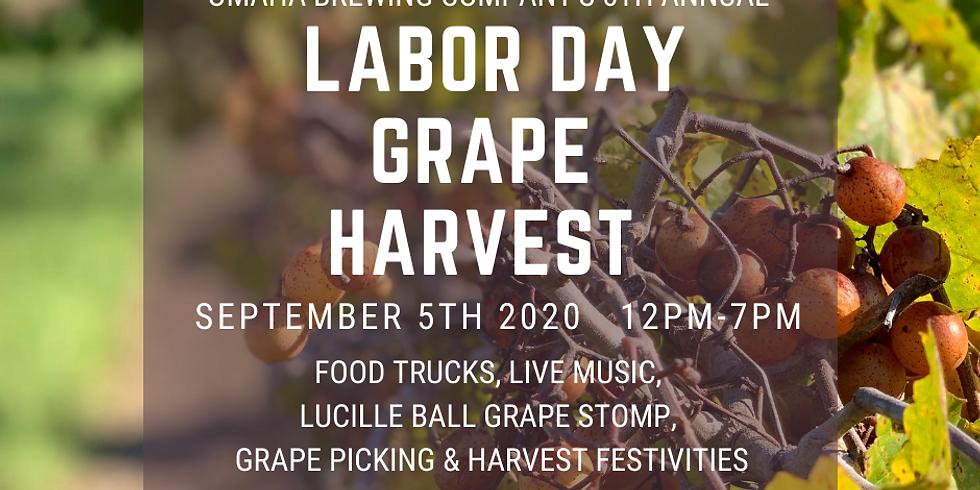 Labor Day Grape Harvest