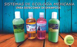 SHAMPOOS SISTECOMEX