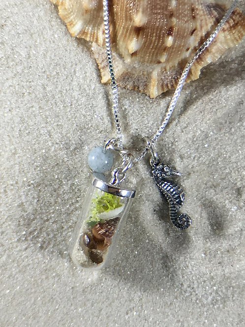 Beach Shell Terrarium Sterling Silver Necklace