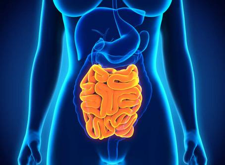 Câncer de intestino delgado