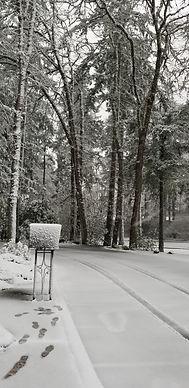 snowy drive 2019.jpg