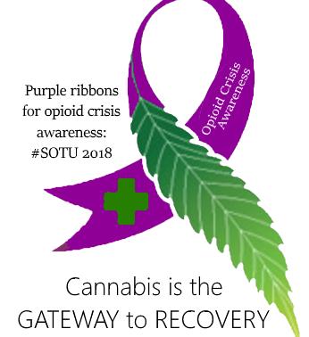 Purple Ribbons: Opioid Crisis Awareness