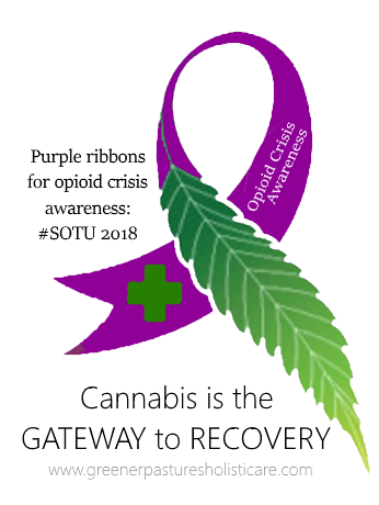opioid crisis awareness ribbon