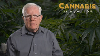 Cannabis Is In Your DNA