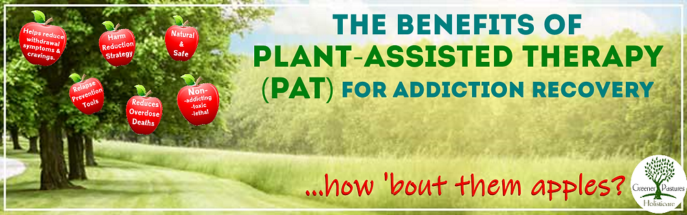 PAT Plant Assisted Therapy for addiction recovery