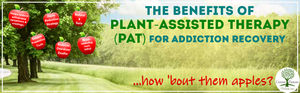 PAT Plant-Assisted Therapy for addiction recovery