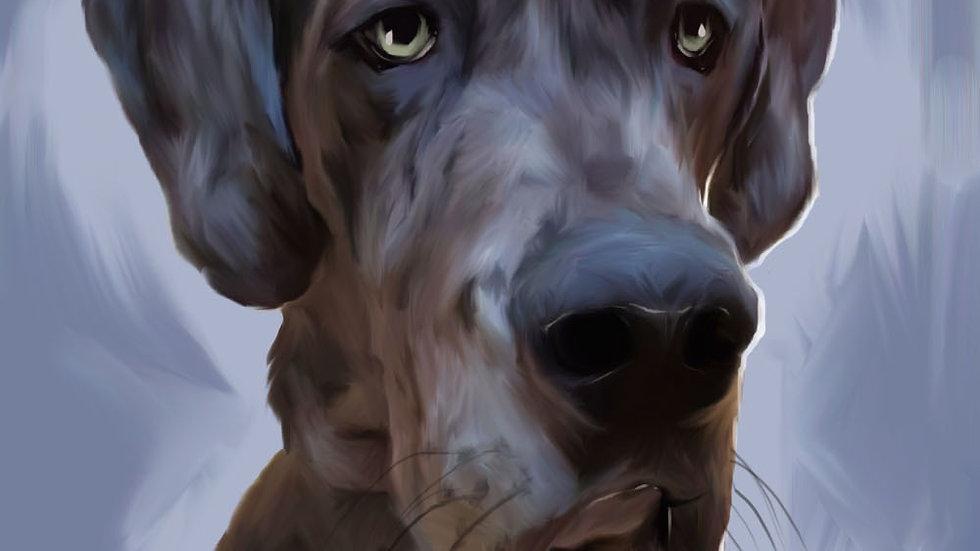 Oil Style Digital Portrait