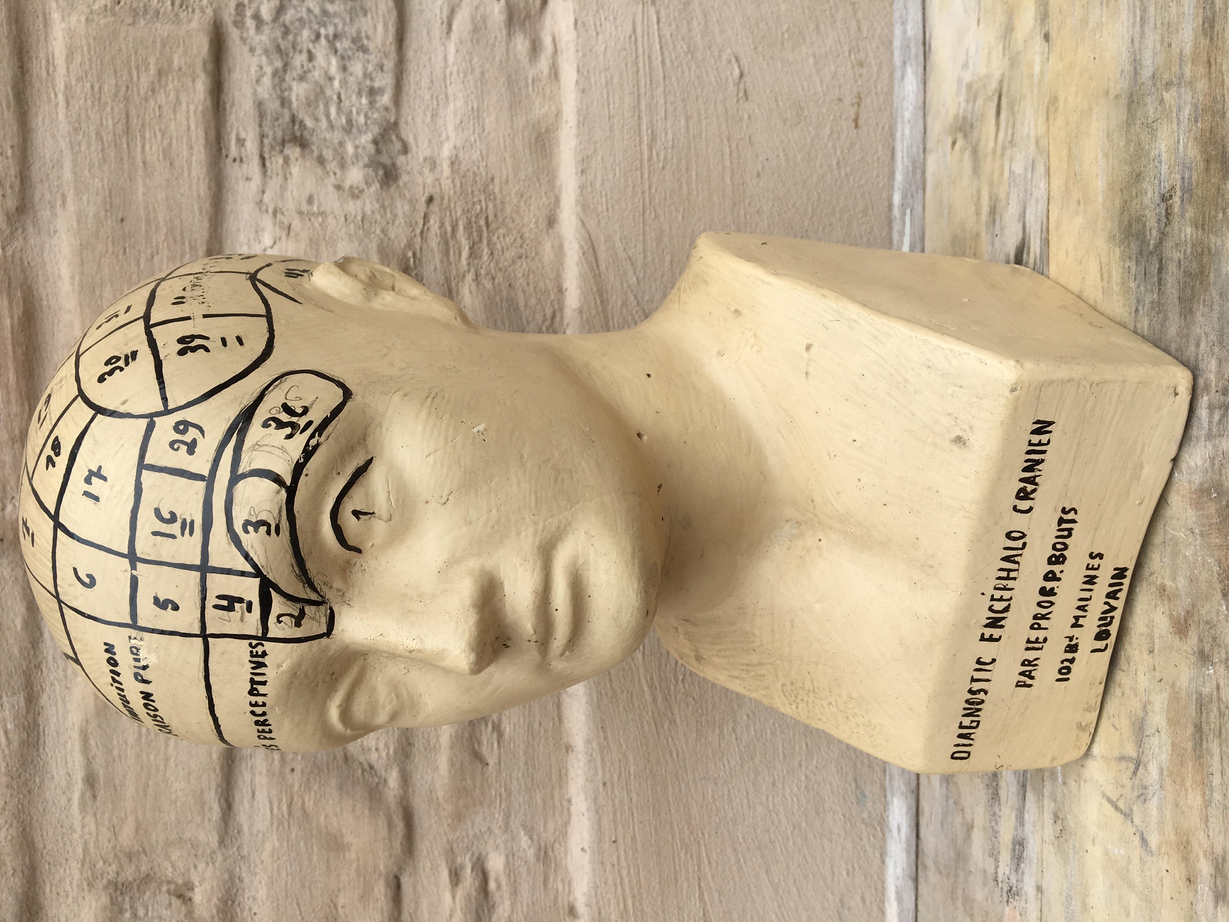 Vintage Plaster head