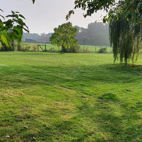 Nachher (Rasen gemäht)
