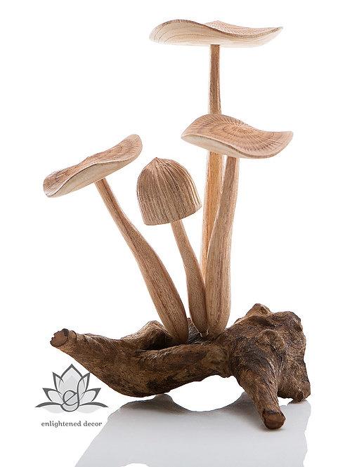 Meadow Mushroom, Large