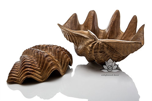 Carved Shell Set