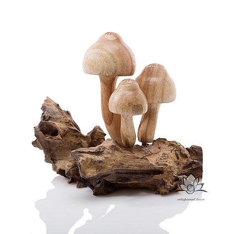 Honey Mushroom, Small