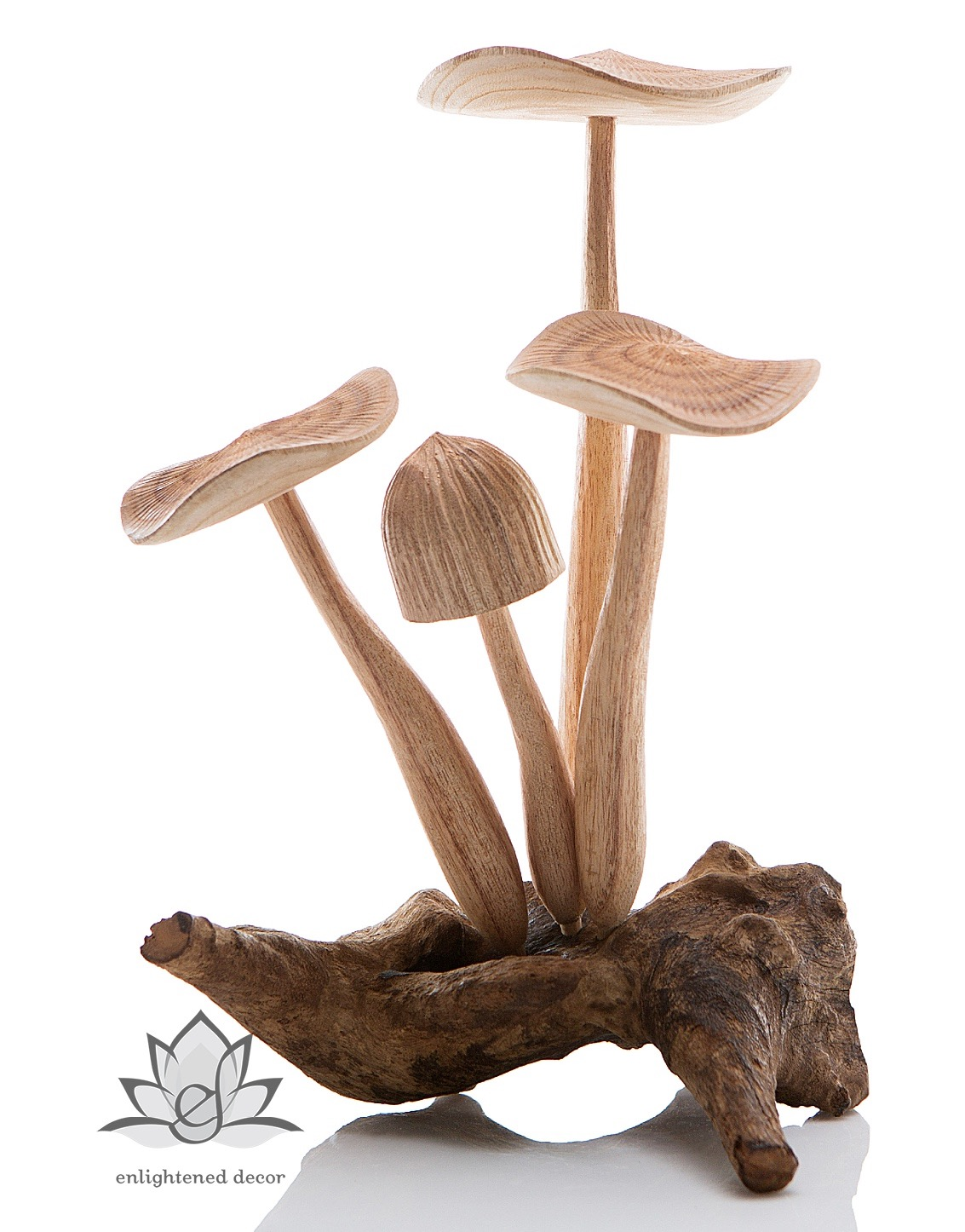 #94-2 Meadow Mushroom Large-1_logoWEB_ed