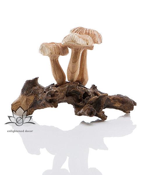 Morel Mushroom, Small