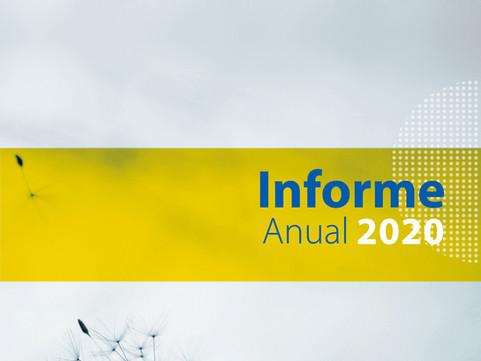 Informe anual 2020 - Proyectos Ingeniería