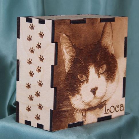 Cat Box Side & Front.jpg